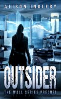 Outsider Book Cover